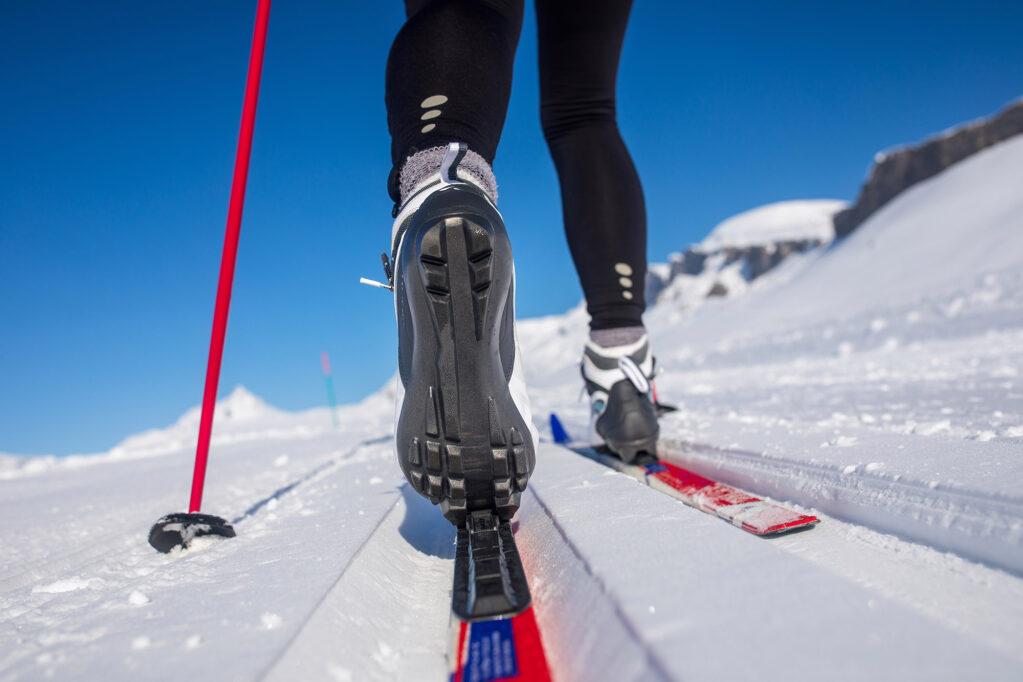 ski fond